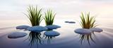 Steine mit Gras im See 3