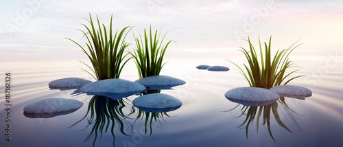 Leinwanddruck Bild Steine mit Gras im See 3