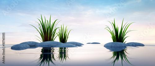 Foto auf Acrylglas See sonnenuntergang Steine mit Gras im See 2