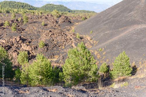 Fotobehang Pistache volcano Etna, mount Sartorius, sicily, italy, the eruptive cones of 1865