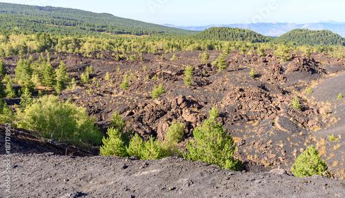 Keuken foto achterwand Beige volcano Etna, mount Sartorius, sicily, italy, the eruptive cones of 1865