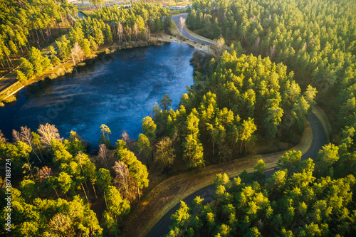 Foto op Canvas Natuur Aerial view on pine forest, road surrounded with pine trees from above