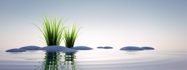 Steine mit Gras im See 1