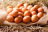 Eggs in a heap of Hay - 187213181