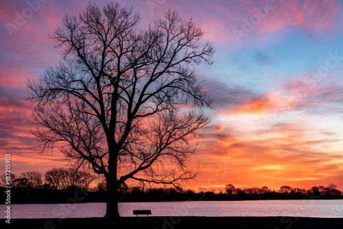 Fotobehang Ochtendgloren Colorful Sunrise