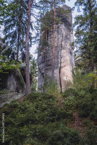 High rock in Adrspach Teplice Rocks landscape park in Broumov Highlands region o Poster