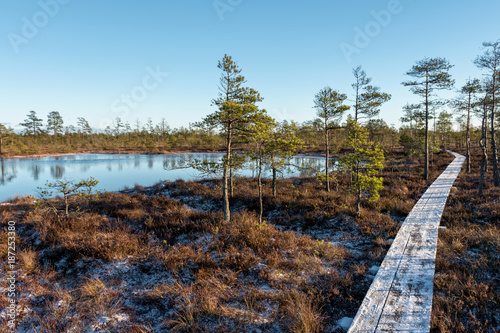Foto op Canvas Pool Babite / Latvia - 01.07.2018: Cenas Tirelis Swamp Trail In Sunny Winter Day