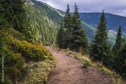 Footpath from Pec pod Snezkou town in Czech Republic to the peak of Snezka Mount Poster