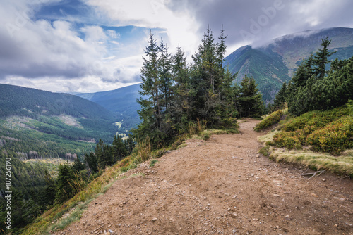 Footpath from Pec pod Snezkou town in Czech Republic to the peak of Snezka Mount Poster