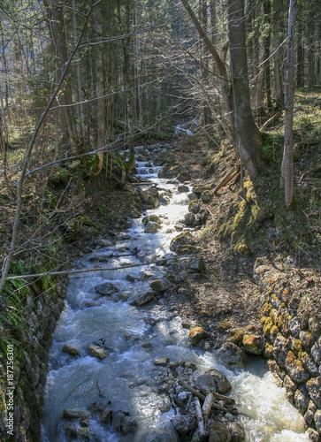 Papiers peints Rivière de la forêt Bach 1