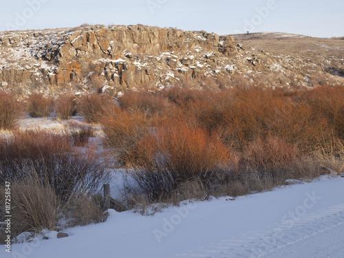 Staande foto Diepbruine Winter near Bone, Idaho 8021