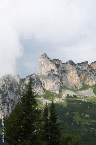Foto op Aluminium Khaki bavarian alps