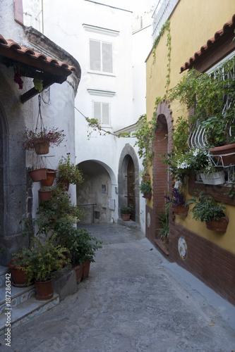 In de dag Napels ischia forio italy street flowers