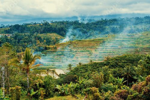 Fotobehang Rijstvelden typical beautiful Rice terraced paddy fields