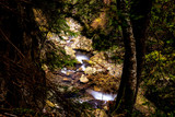 Overview of a mountain creek in Romania with fall foliage and small waterfalls - 187297304