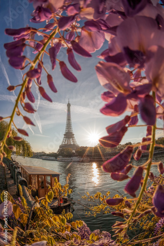 Eiffel Tower with boat during spring time in Paris, France Poster