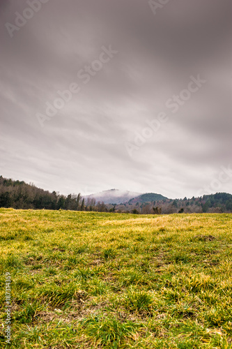 Papiers peints Miel Beautiful landscape of Tuscany coutryside with stormy weather