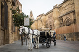 Horse carriage in front of the cathedral in Cordoba, Spain.