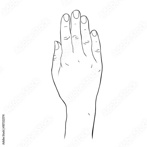 coloring Female hand palm down. vector illustration