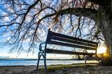 bench at a lake - 187324748