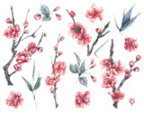 Set of watercolor spring blooming floral elements - 187349931