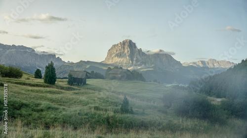 Foto op Aluminium Khaki Seceda Alp in Val Gardena South Tyrol - Dolomites