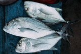 The market for marine fish - 187376555