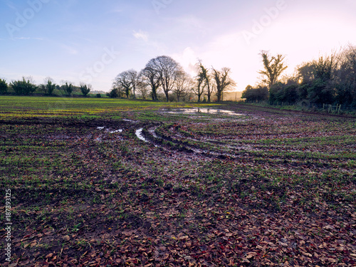 Fotobehang Blauwe hemel winter countryside morning,Northern Ireland