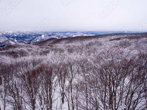 Fotobehang Lavendel 冬の秋田県