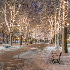 The architecture of Boston in Massachusetts, USA with Christmas Decoration.