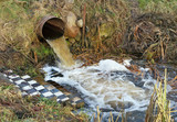 Dirty waste water merges into a clean forest stream - 187431309