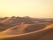 Quadro Desert