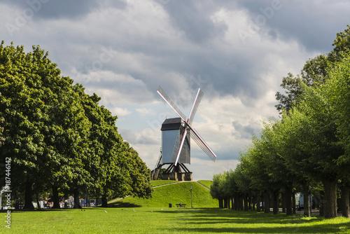 Foto Spatwand Brugge Walk of the mills of Kruisvest in Bruges, Belgium