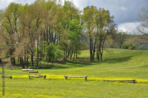 Fotobehang Pistache Prato primaverile in centro equestre, con ostacoli e alberi. Pratoni del Vivavo, Castelli Romani, Lazio, Italia