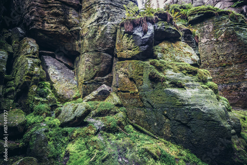 """Mossy rocks in so called """"Siberia"""" - picturesque  ravine in Teplice Rocks, part Poster"""