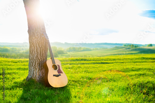 Fotobehang Natuur Acoustic guitar leaning against the trunk of a tree against a backdrop of beautiful scenery, a green meadow, spring hills, blue sky and sunset