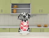 Hungry dalmatian dog with fork for dinner sitting at the table in the kitchen