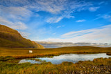 A small lake against and sheep a background of green hilly mountains. Traditional landscape of Iceland. Beautiful northern landscape.