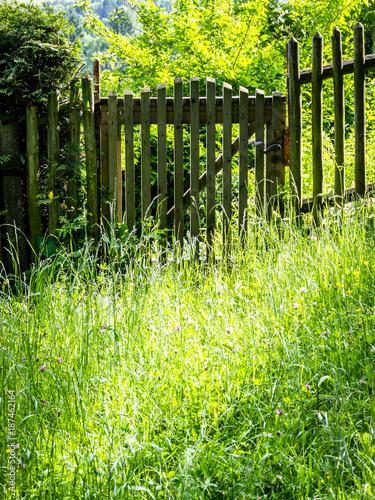Foto op Plexiglas Geel old fence