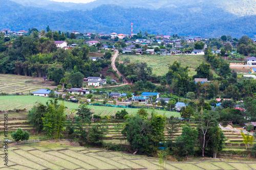 Foto op Aluminium Khaki Aerial view of rice paddies farm and vegetables farm in rural Thailand.