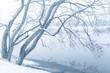 minimalistic winter landscape