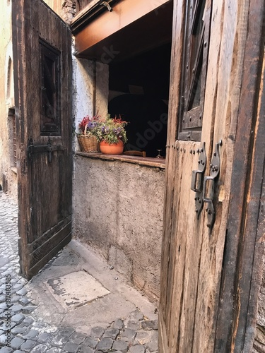 Potted Flower Plant, Rome, Italy - 187483585