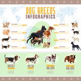 Dog Breeds Infographics