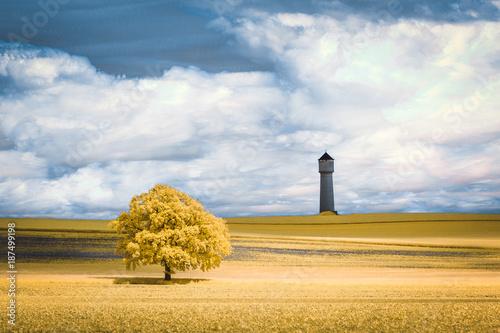 Foto op Plexiglas Honing Un arbre solitaire et un château d'eau dans un champ en infrarouge et nuages en timestacking