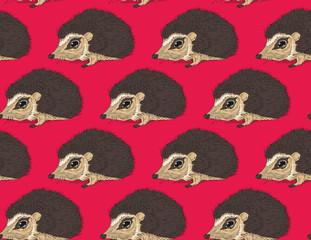 seamless cute hedgehog animal pattern vector illustration