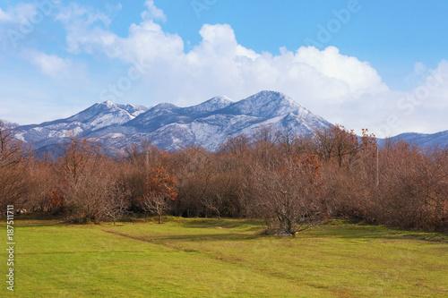 Staande foto Diepbruine Landscape with blue sky, snowy mountains and green grassland. Bosnia and Herzegovina, Tuli region