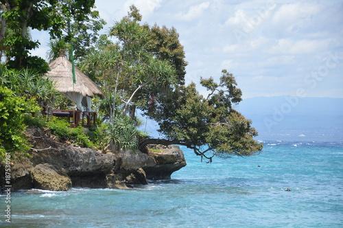 Foto op Aluminium Khaki Tropische Landschaft am Meer