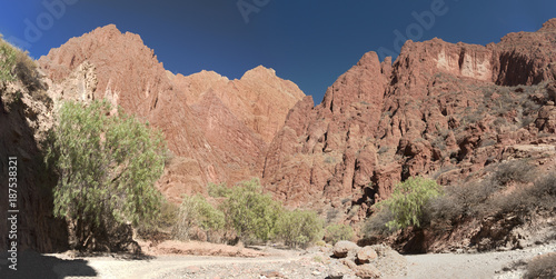 Fotobehang Zalm Puerta del Diablo, red rock formation in dry Red Canyon Quebrada de Palmira near Tupiza, Bolivian Andes- Bolivia, South America