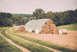 hay ball on field. farm field with hay bales - 187538970