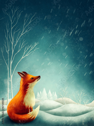 Poster Little red fox in winter